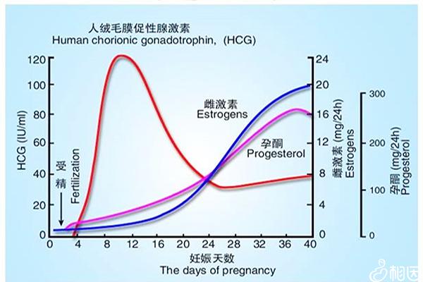 怀孕hcg正常值