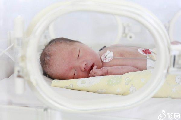 免疫缺陷宝宝禁忌接种卡介苗