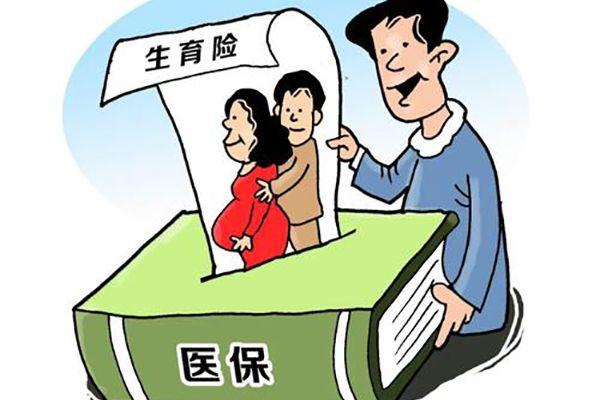 生育保险有助于提高人口素质