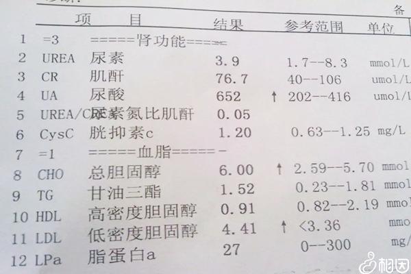 肾功能检查报告单