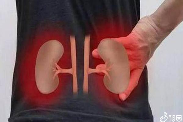 自测肾功能状况