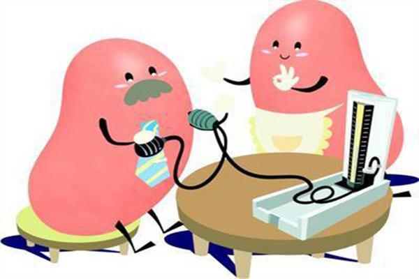 肾功和肾脏常规检查的区别