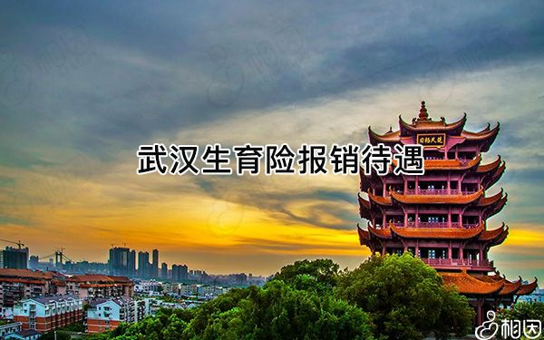 武汉市生育保险报销待遇有四类