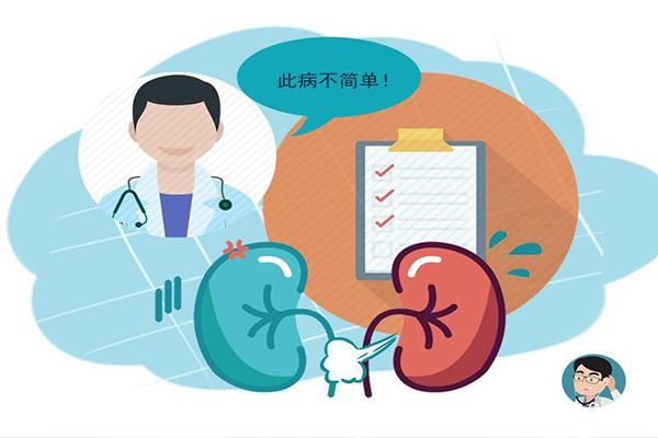 肾功检查和肾脏B超的准确性