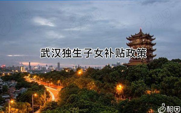 武汉独生子女补贴有了新规定