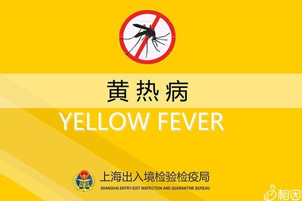 黄热病疫苗预约接种流程