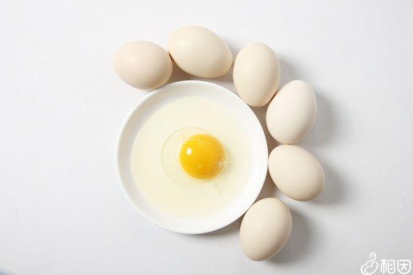 鸡蛋为高蛋白食物