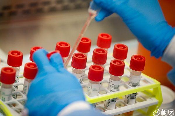 麻腮风疫苗保护效果