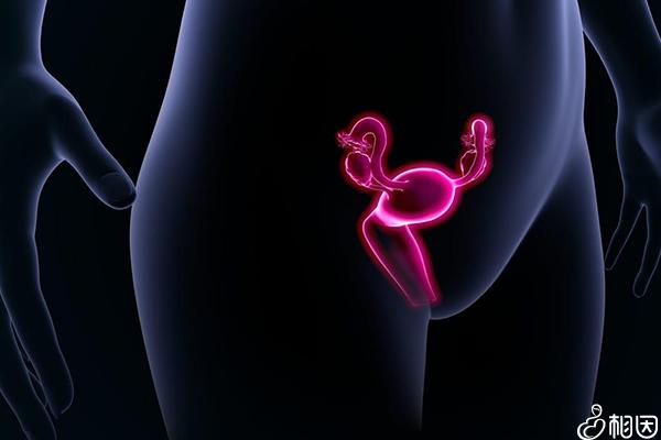 内分泌检查可以查出的疾病