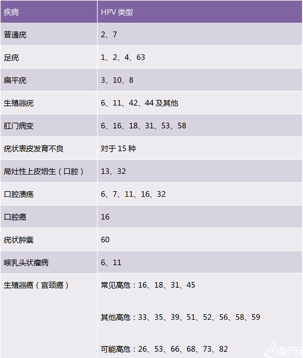 hpv筛选疾病目录