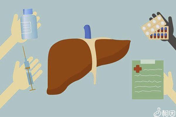 正常人可肝功检查间隔可长达一年