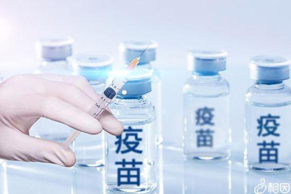 疫苗接种流程