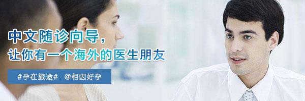 海外试管婴儿中文随诊向导