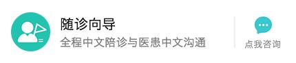 中文随诊向导